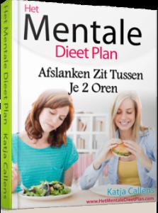 mentale dieet plan review